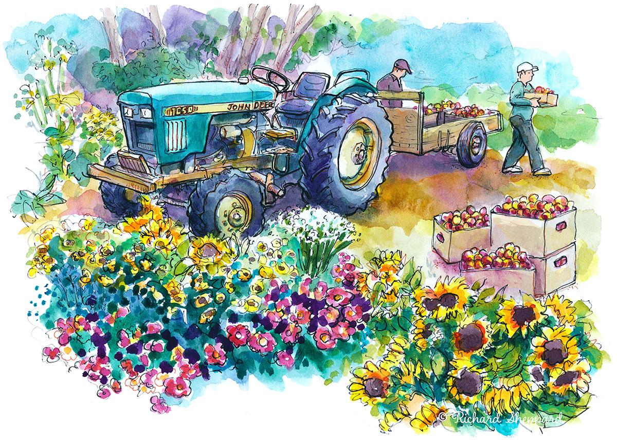 devoto-farms-packing_s