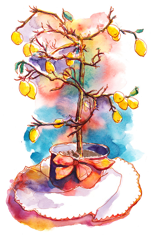 lemon tree_ s