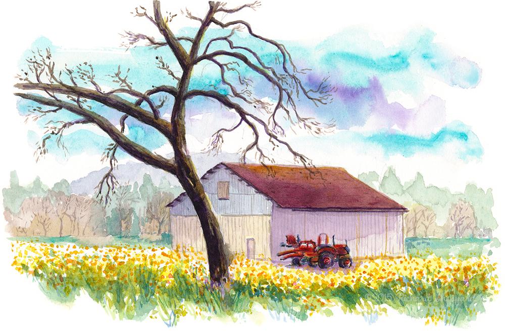 tree, barn, mustard_s